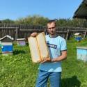 Васильково-Рапсовый мёд