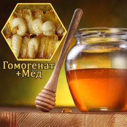 Мёд с гомогенатом (трутневым молочком)