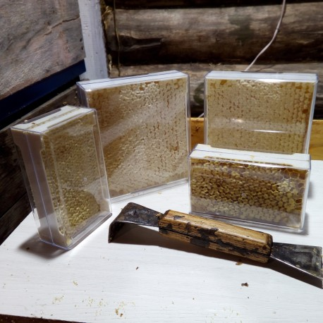 Сотовый мёд в секционных рамках