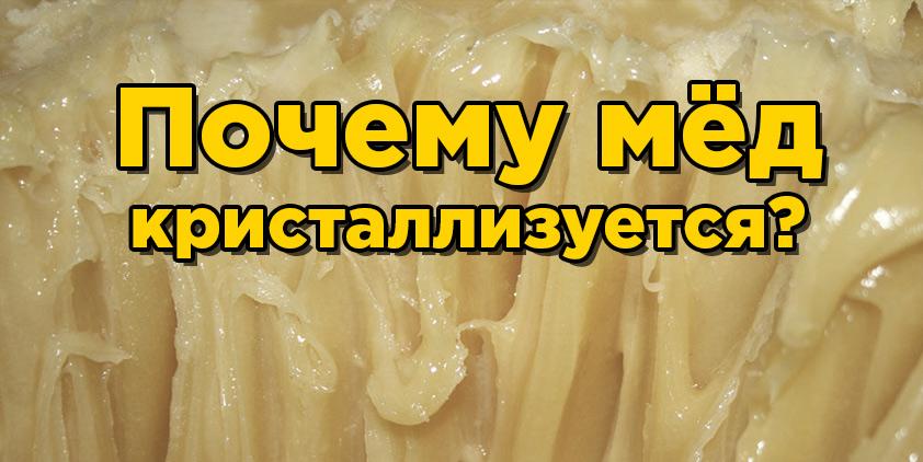 Почему кристаллизуется мёд? Как должен кристаллизоваться мёд?